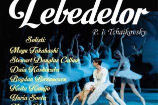 Lacul lebedelor – 5 martie, ora 19.00